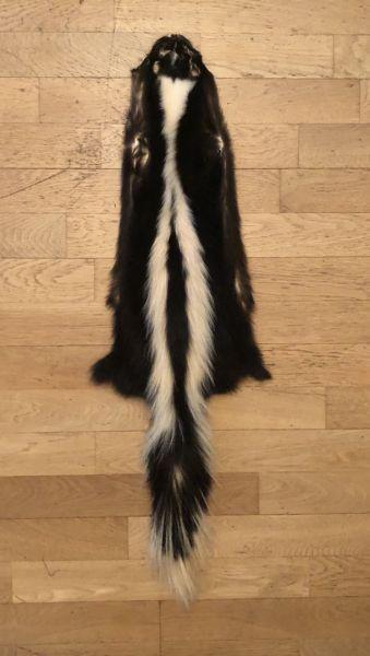 Skunkfell Weiß-Schwarz