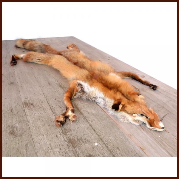 Fuchsfell mit Schwanz