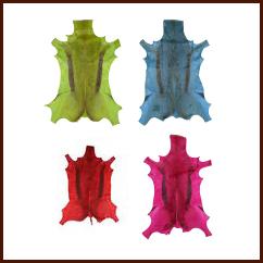 Springbockfell bunte Farben