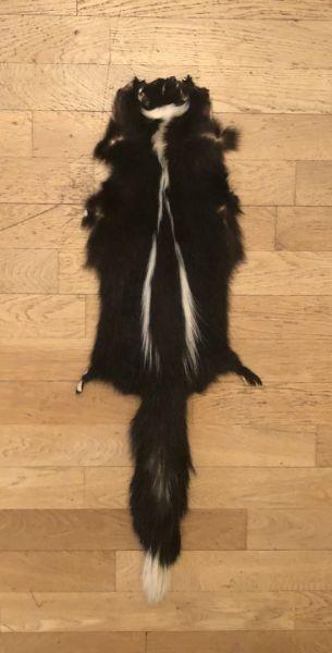 Skunkfell Schwarz-Weiß